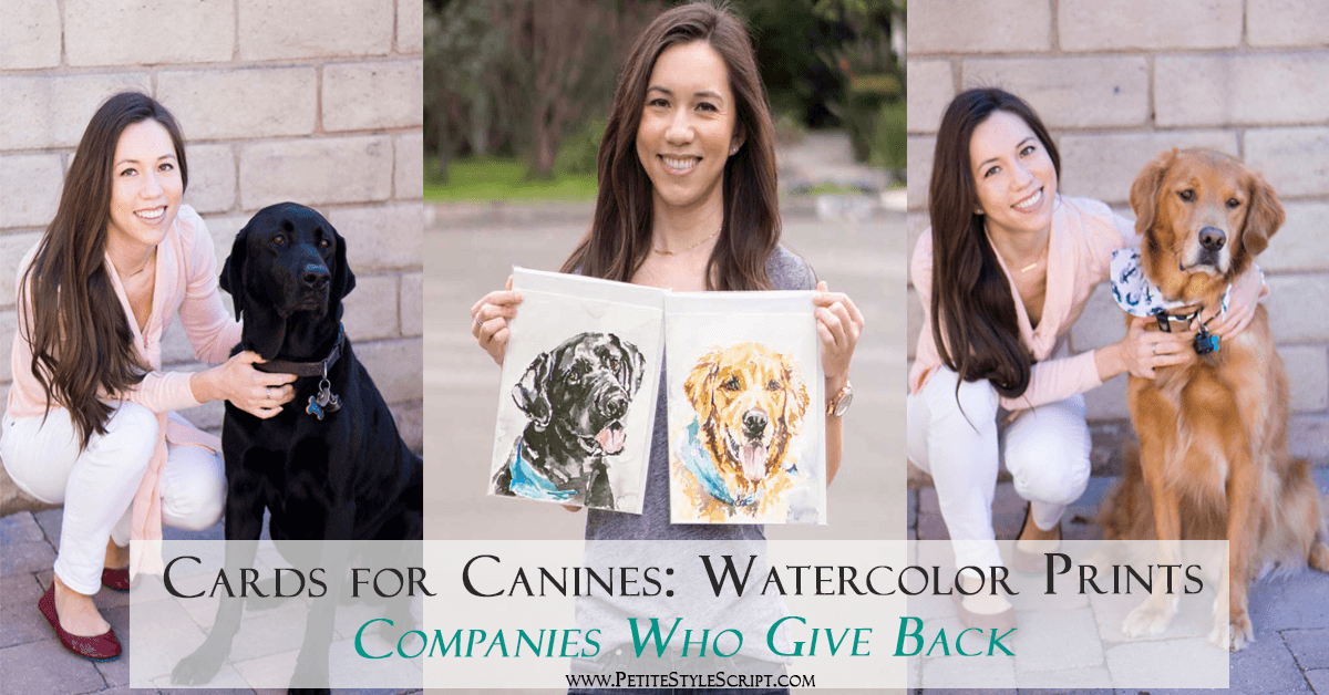 Cards For Canines Review Dog Lover Gift Giving Back Series Watercolor Portraits Greeting