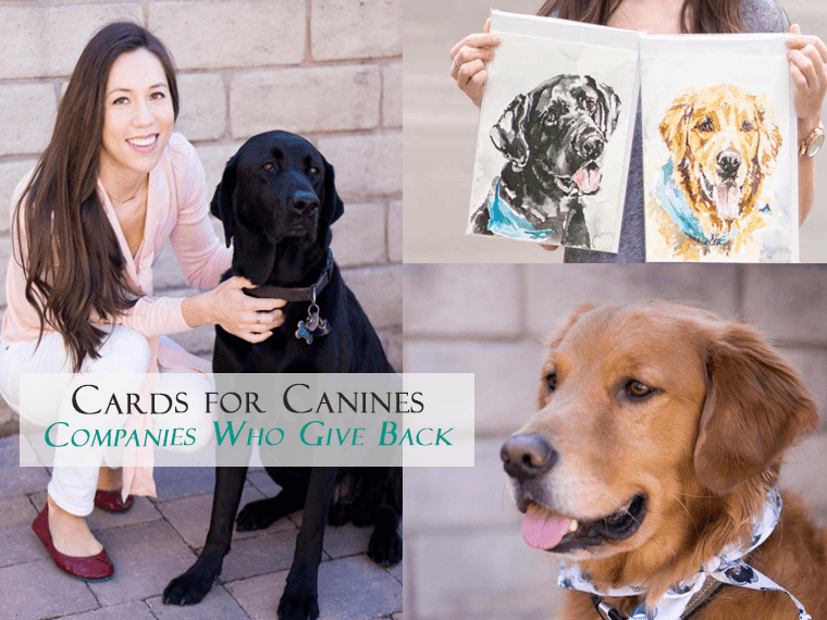 Cards for Canines Review | Dog Lover Gift | Giving Back Series | Watercolor portraits greeting cards | Rescue dog shelter | Etsy shop Puppy