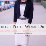 Perfect Petite Work Dress